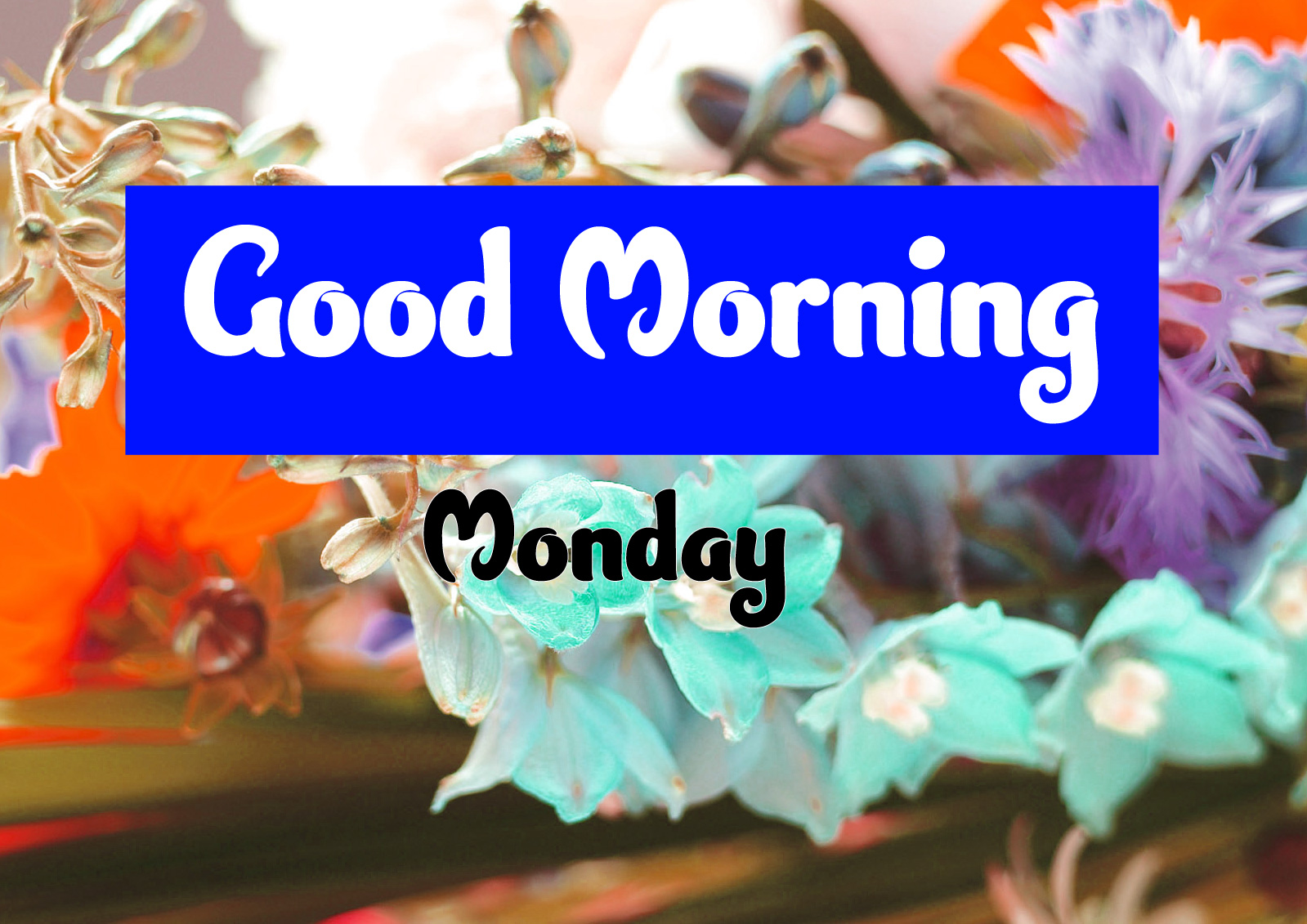 Good Morning Monday Images 2