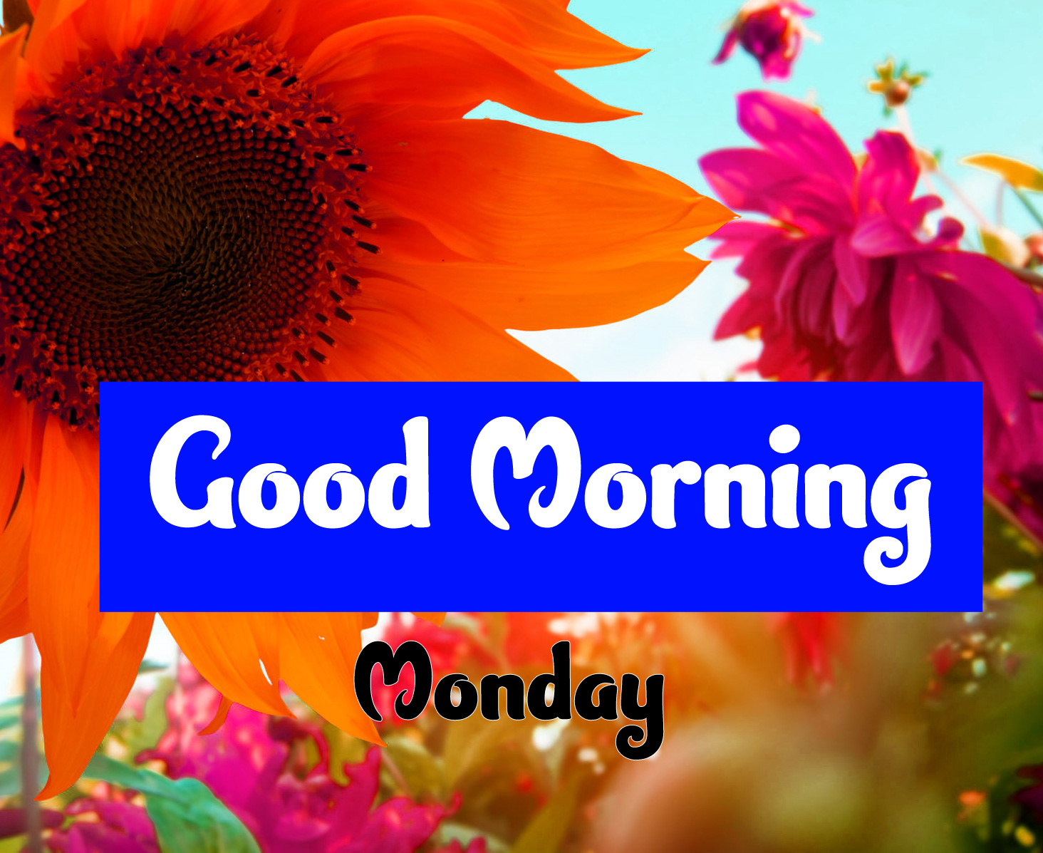 Good Morning Monday Images 3