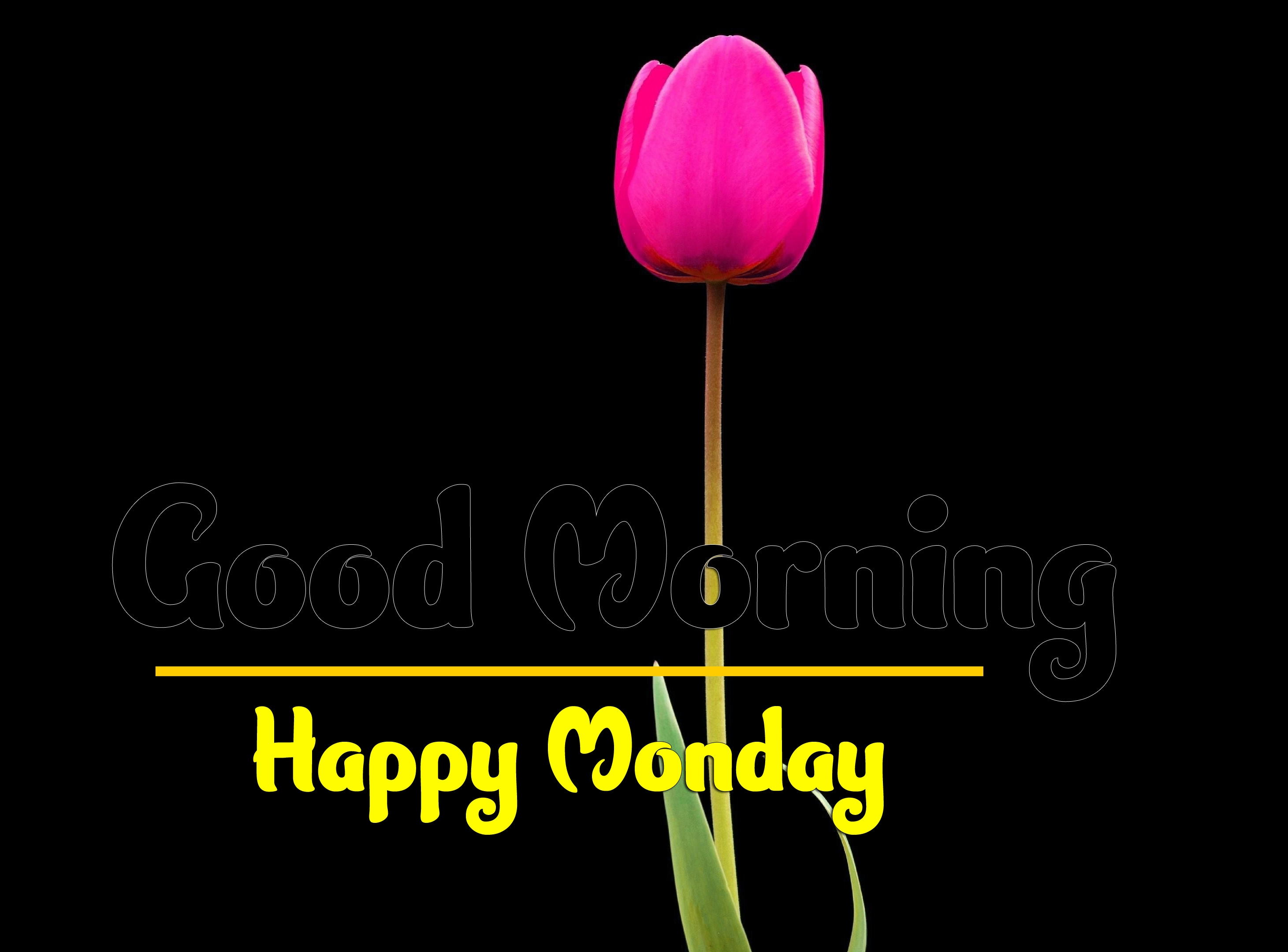 Good Morning Monday Images 4