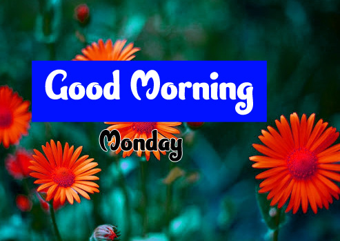 Good Morning Monday Images 5