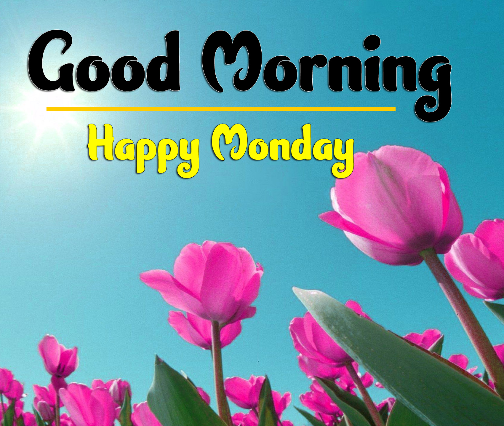 Good Morning Monday Images 6