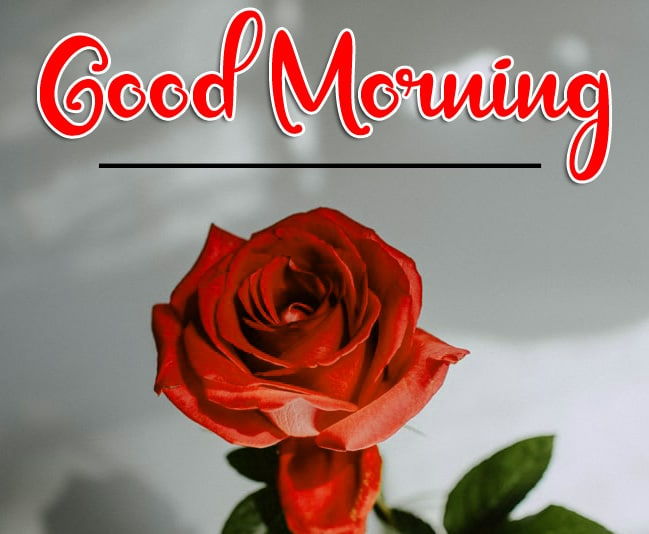 Lover Good Morning Pics Wallpaper Download 13