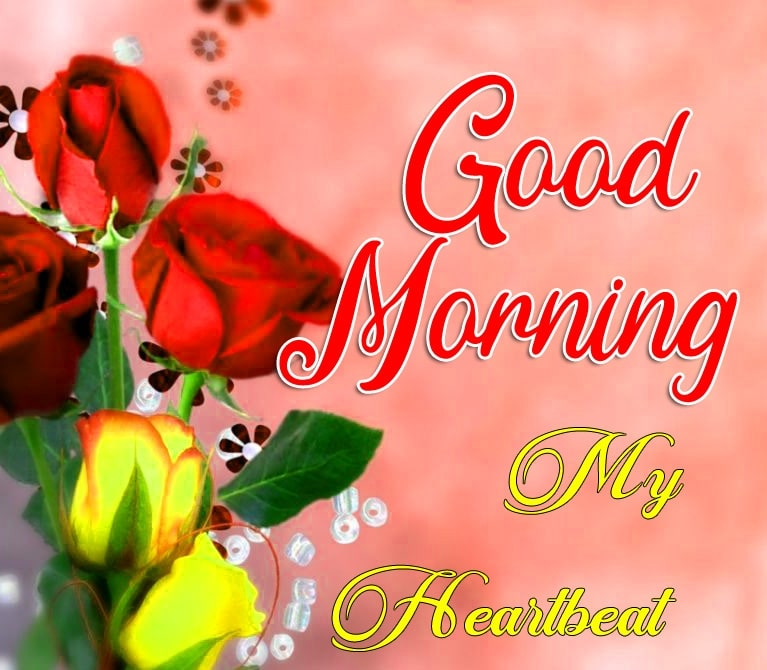 Lover Good Morning Pics Wallpaper Download 14