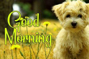 Lover Good Morning Pics Wallpaper Download 19