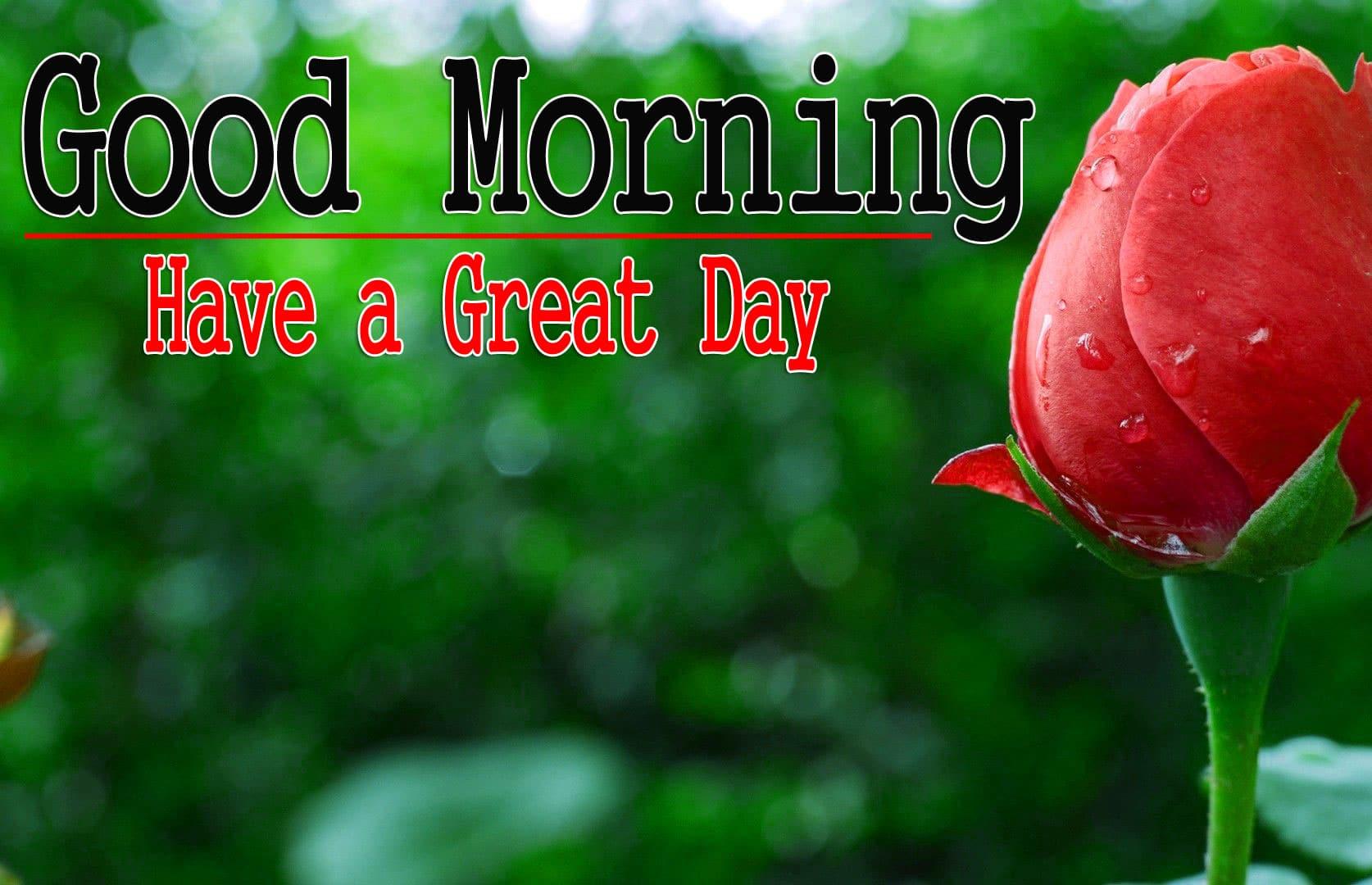Nature Good Morning Wallpaper 3