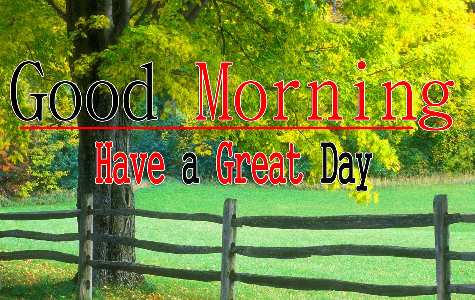 Nature Good Morning Wallpaper 4
