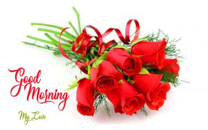 New Top Quality good morning have a nice day Wallpaper Download