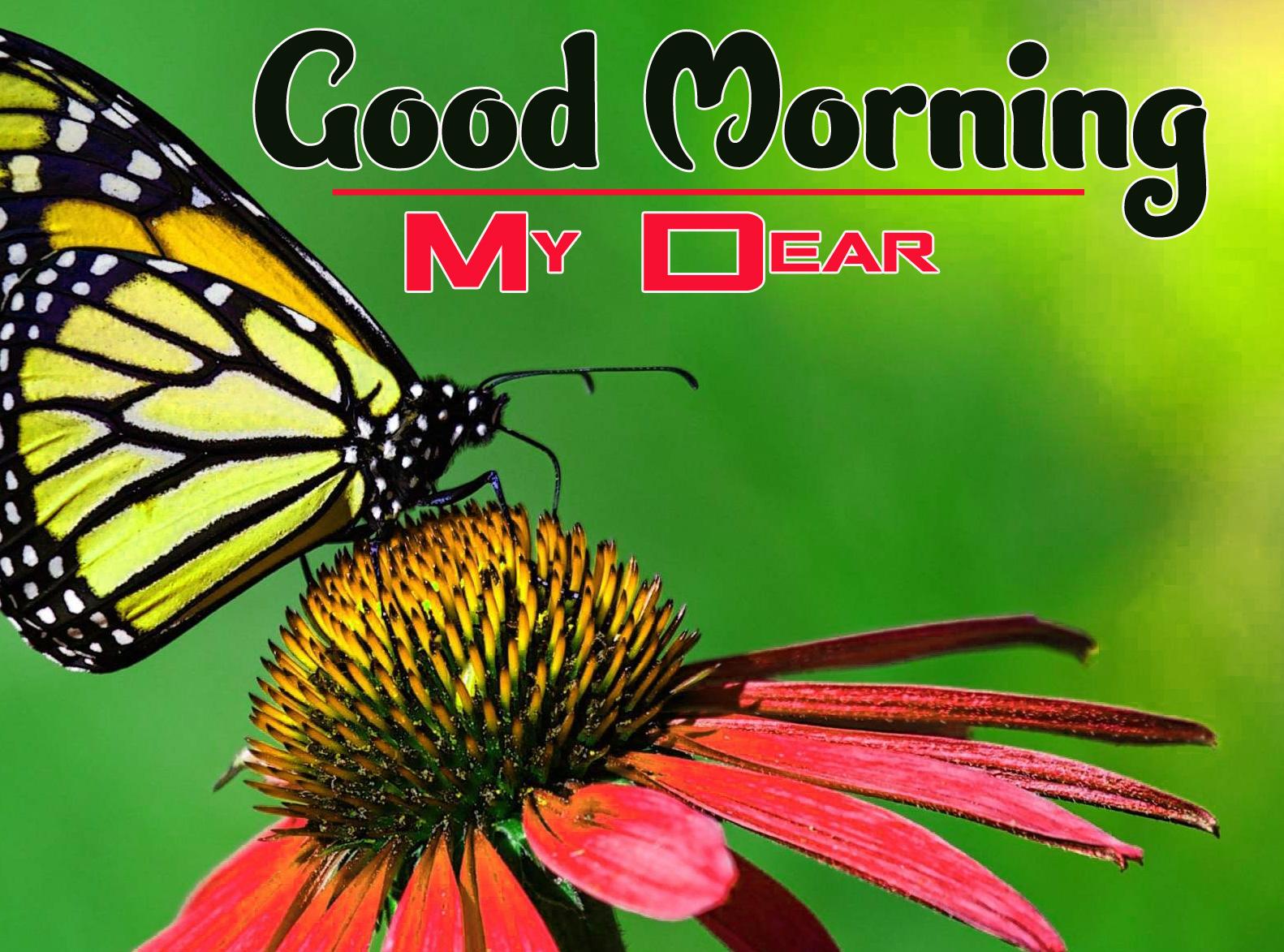 Spring Good Morning Images 5