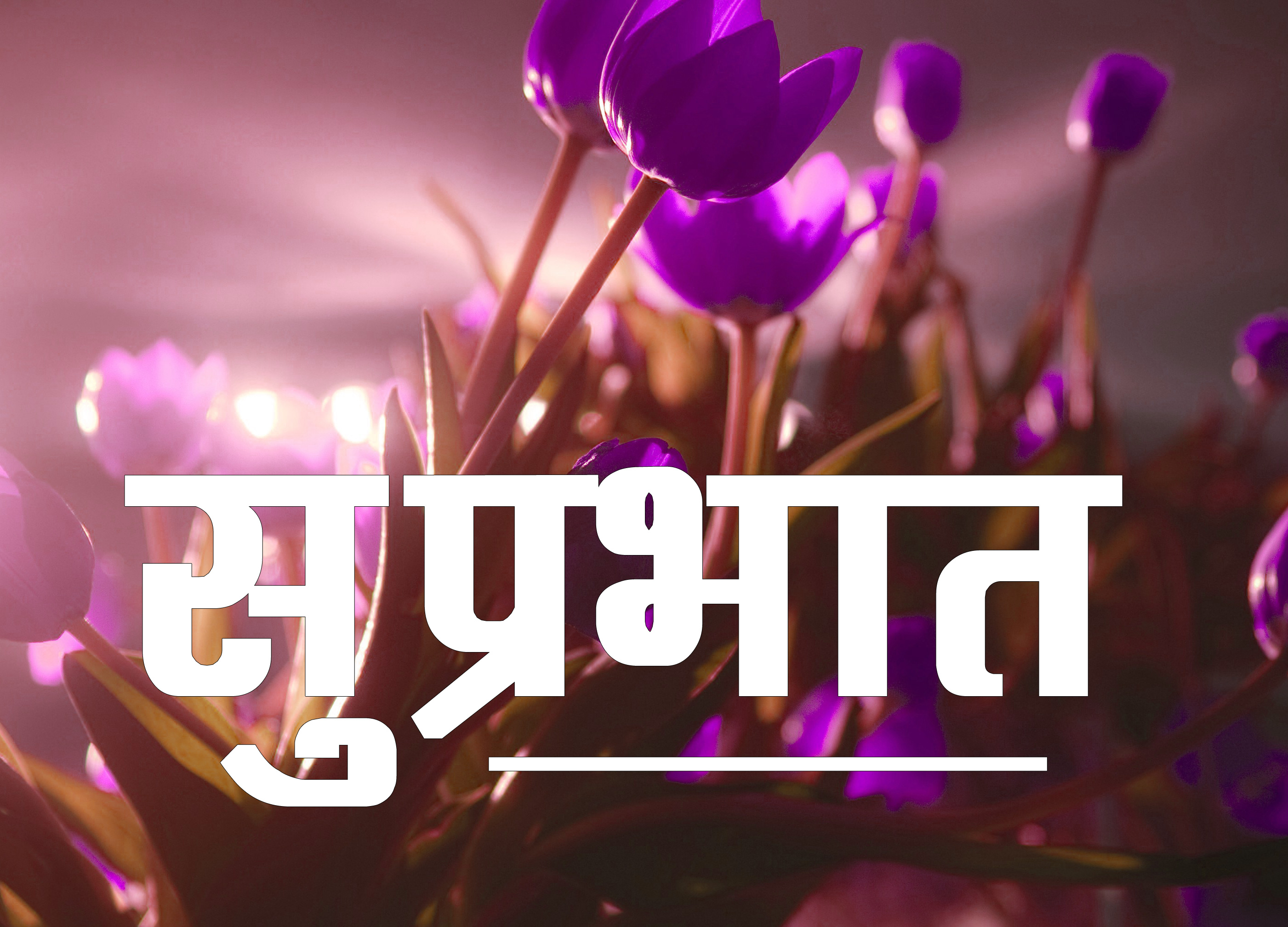 Suprabhat Images 1