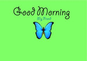 Top Full HD butterfly good morning Images Pics Download