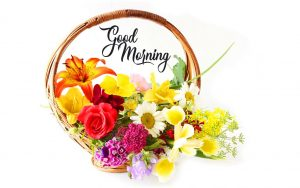 good morning have a nice day Pics Download
