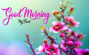 good morning have a nice day Wallpaper 2021