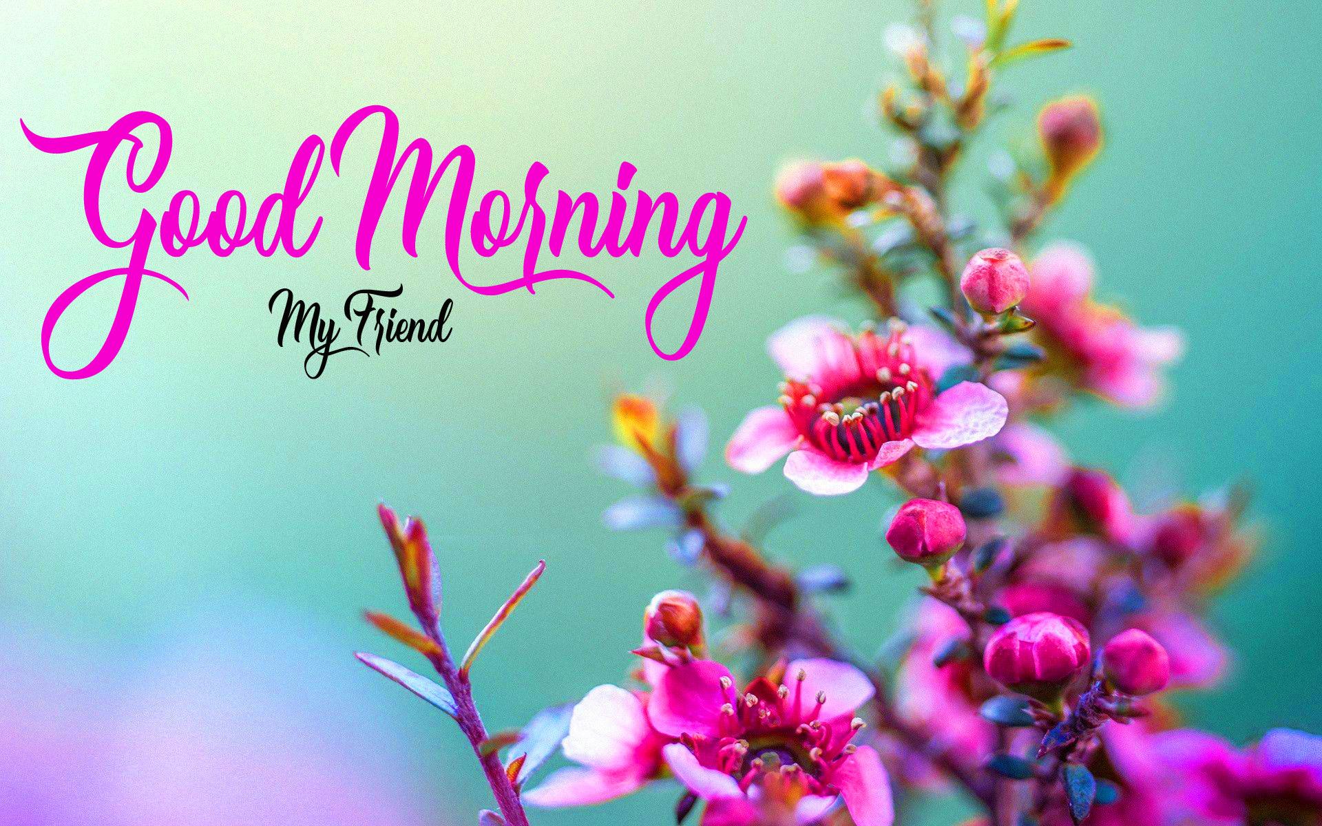 Nice Good Morning Images Wallpaper HD download