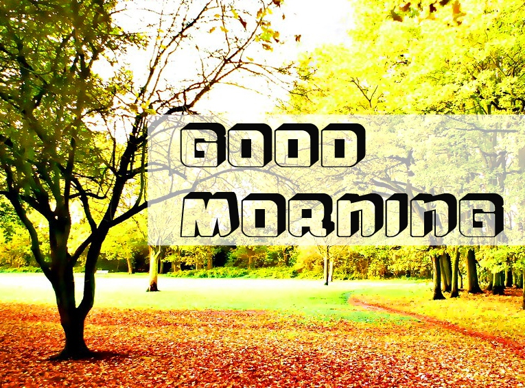 Good Morning Images 14
