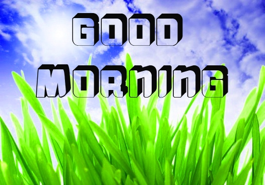 Free New Good Morning Images Pics Download