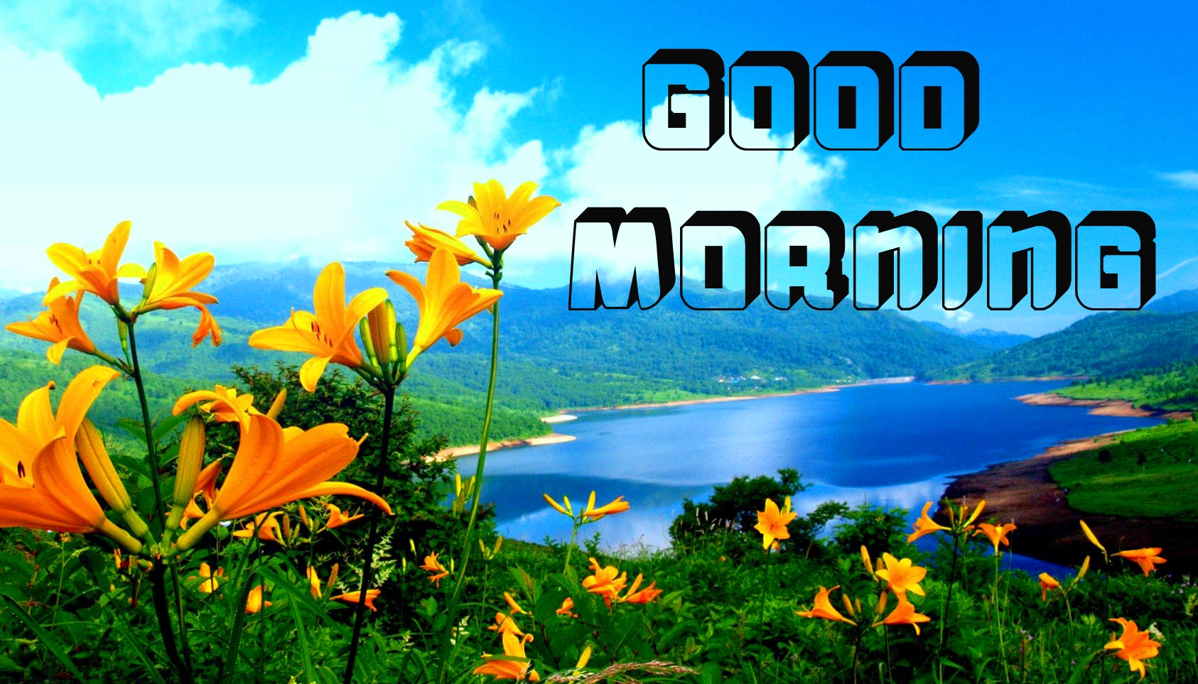 Latest free Flower Good Morning Images Pics Download