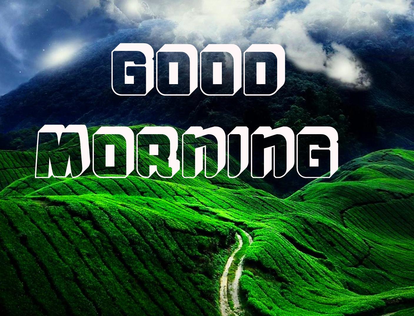 Good Morning Images Wallpaper Pics New