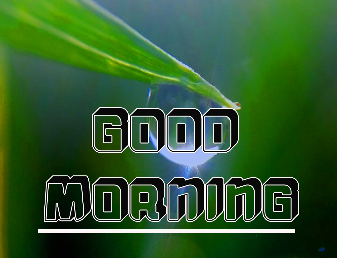 Best Full HD Good Morning Images Pics Download