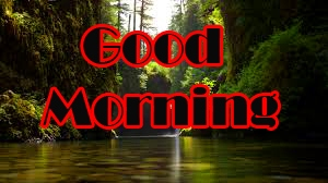 New Free Good Morning Images Pic Download