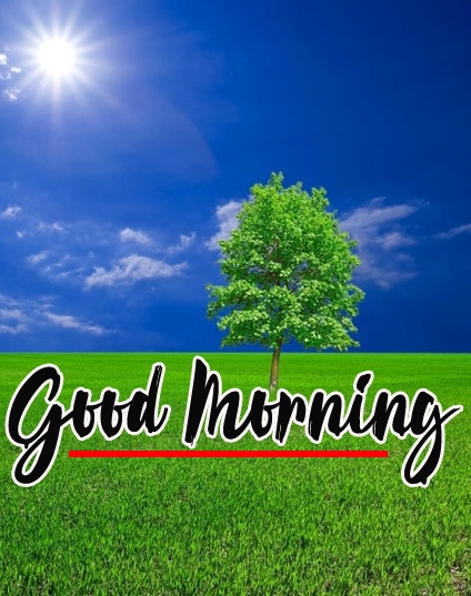 Good Morning Images Pics Wallpaper Latest Download