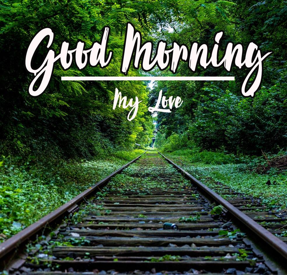 Good Morning Images Pics Wallpaper Free
