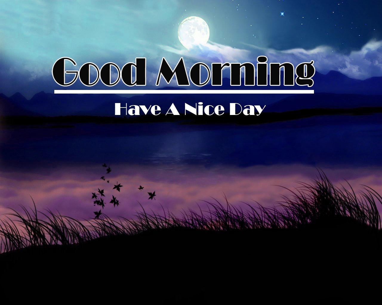 Good Morning Images Pics Free Latest