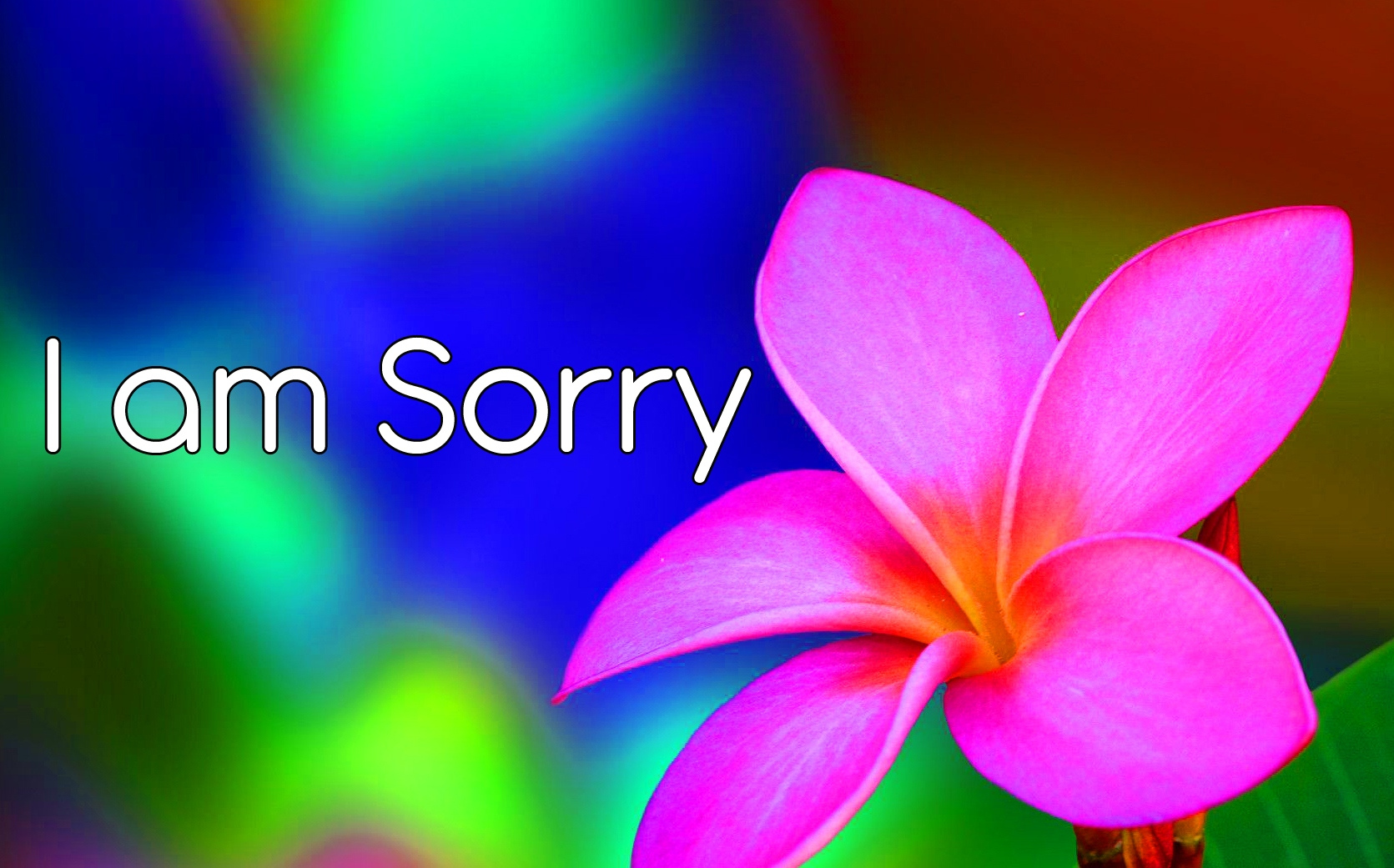 I am Sorry Images 27