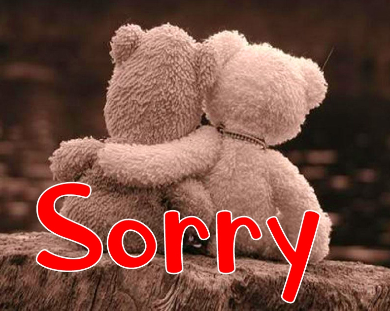 I am Sorry Images Pics Wallpaper free Download