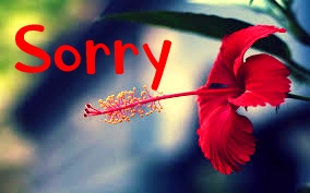 I am Sorry Images Wallpaper Pics For Facebook