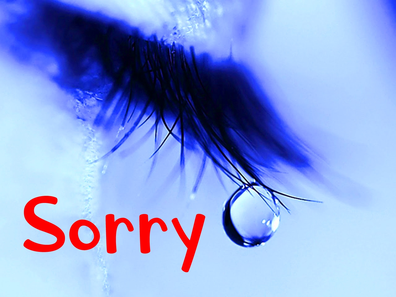 I am Sorry Images Pics free Download