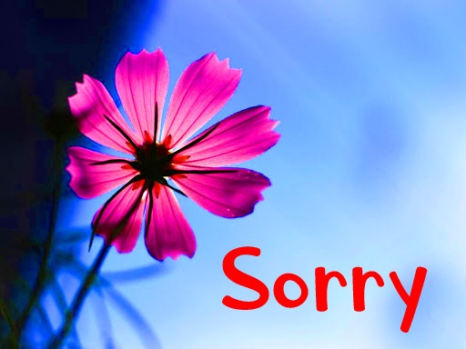 I am Sorry Images Wallpaper Pics Download