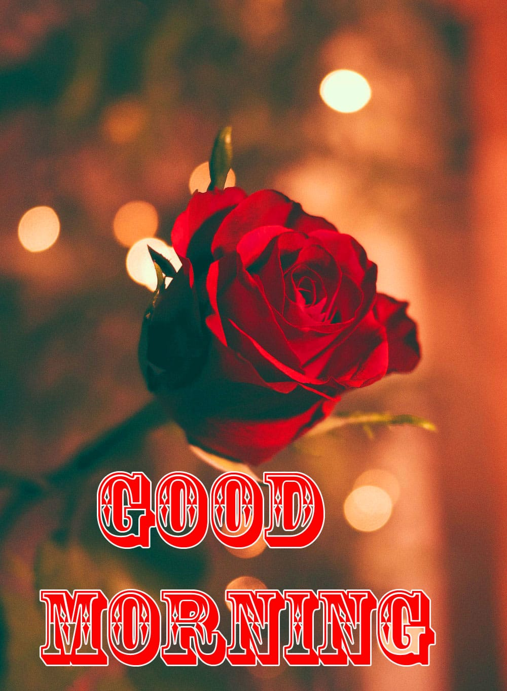 3d Good Morning Wishes Images Photo Download 1