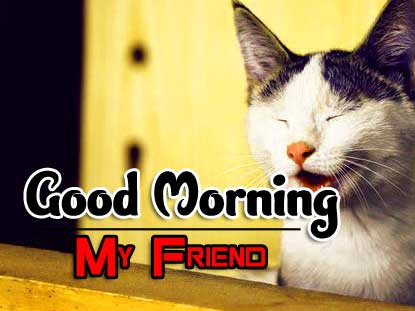 All Funny Good Morning Pics Download 3