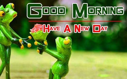 All Funny Good Morning Wallpaper Free Download