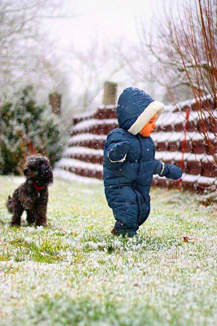 Cute Baby Boys Whatsapp DP Pics Download