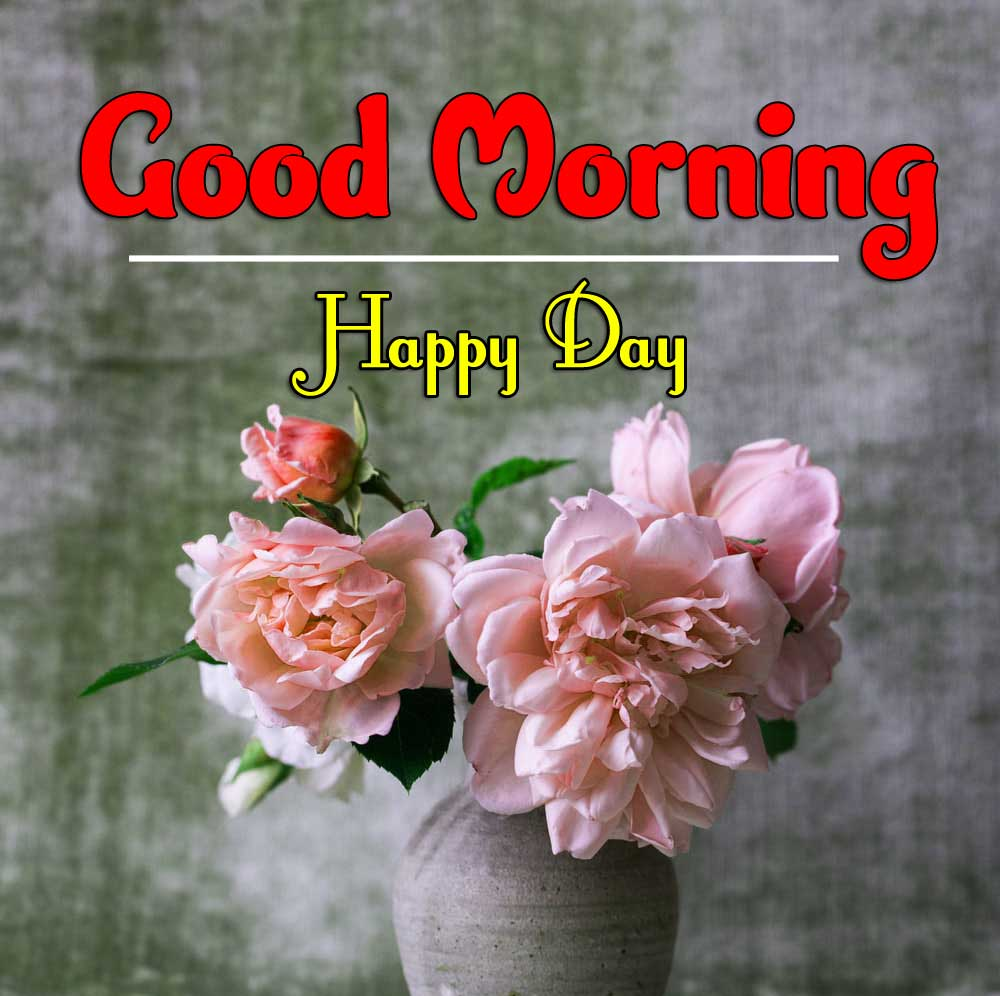 Flower Good Morning Wishes Pics Photo Download