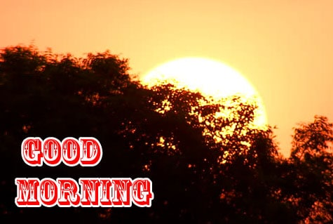 Free Good Morning Wishes Photo for Status 1
