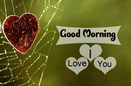 Free I LUV YOU good morning Pics Download