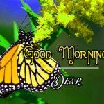 Good Morning Images Wallpaper 12