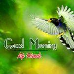 Good Morning Images Wallpaper 13