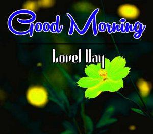 Flower Best Good Morning Images Pics Download