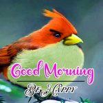 Good Morning Images Wallpaper 23