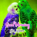 Good Morning Images Wallpaper 25