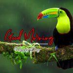 Good Morning Images Wallpaper 31