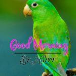 Good Morning Images Wallpaper 32