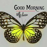 Good Morning Images Wallpaper 35
