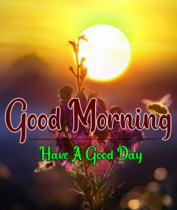 Sunrise Free Best Good Morning Images Pics Download