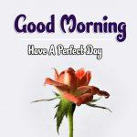 Good Morning Images Wallpaper 42