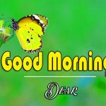Sweet Best Good Morning Images Pics Wallpaper