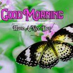 Good Morning Images Wallpaper 47
